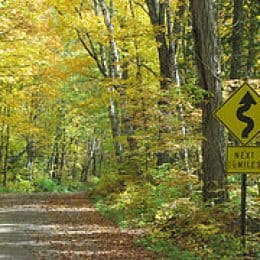 Forest Service Seeks Input On Road System
