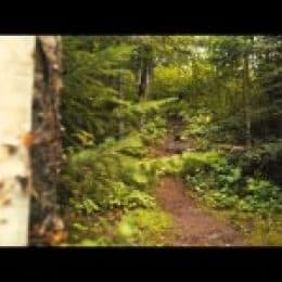 Video: Time Travel in the Boundary Waters