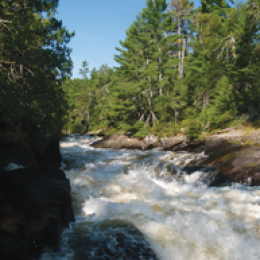State of the Boundary Waters and Paddling to DC – Wilderness News Fall Winter Issue
