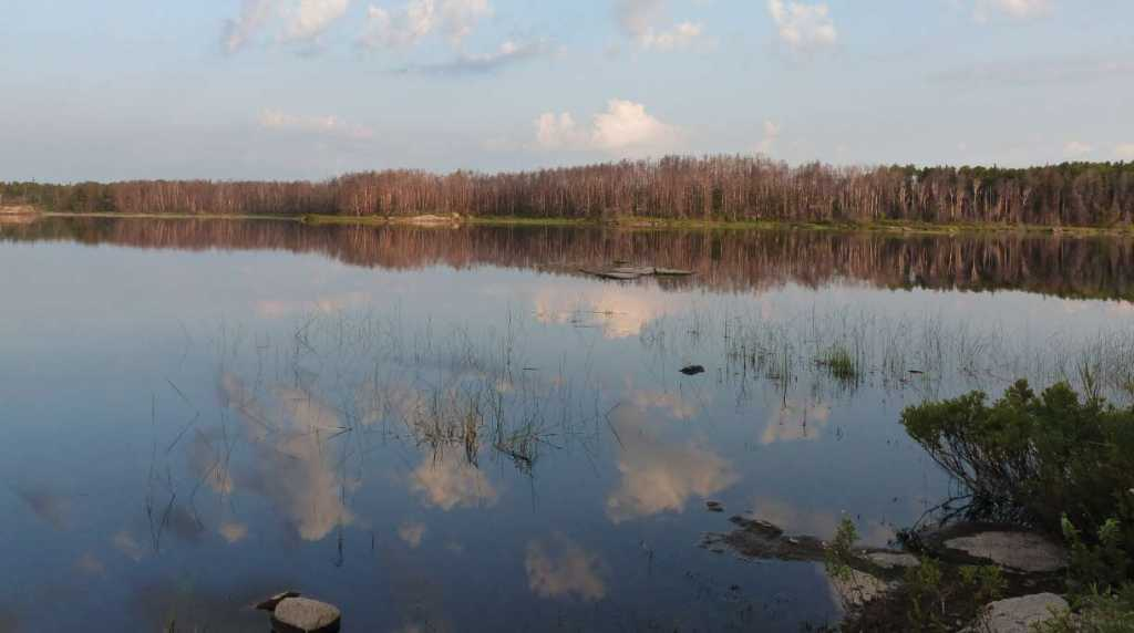 Boundary Waters Calm. All photos by and courtesy of Norma Christianson.