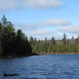 Land Swap Would Transfer 30,000 Acres of Superior National Forest to State Ownership