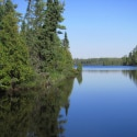 How Humans Affect the Boundary Waters' Woods