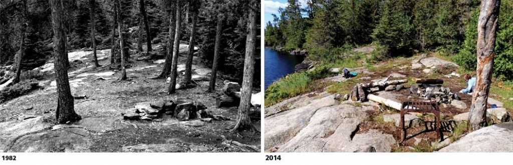 Photos of the same site in 1982 and 2014 show how many campsites have become more open over time. All photos courtesy Dr. Jeff Marion.