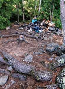 Marion's research found that 43 percent of trees on campsites have moderate to severe root exposure.
