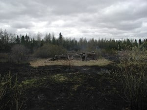 The McNair Site after a prescribed burn. (Superior National Forest photo)