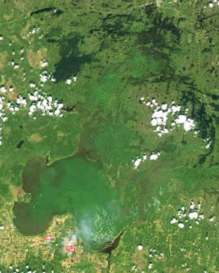 Satellite imagery of Lake of the Woods during a cyanobacteria bloom. (MODIS photo)