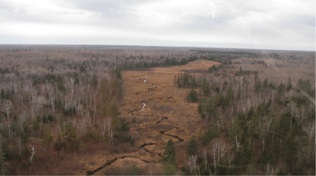 Aerial view of Knife River during 2011 aerial survey (Photo courtesy MN DNR)