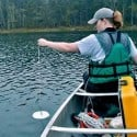 Paddlers Needed to Collect Water Clarity Data in the Boundary Waters