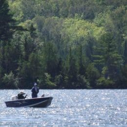 National Forest Forecast Favorable for Fishing Opener