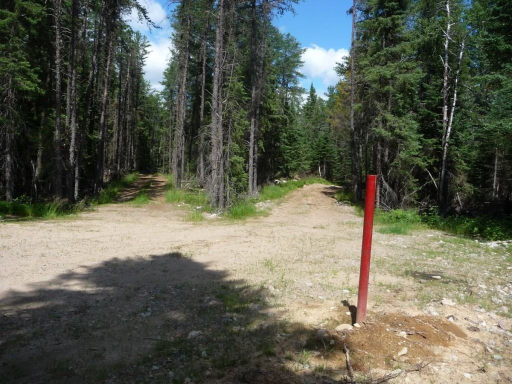A capped drill hole and the web of access roads on Superior National Forest lands near Highway 1, southeast of Ely, in 2010. (Greg Seitz photo)