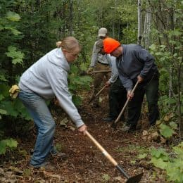 Wilderness Volunteers Toil to Restore Trails