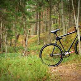 Congress considers opening wilderness areas to bicycles