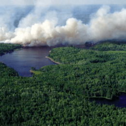 Natural Fire Management in Voyageurs National Park