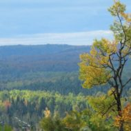 Superior National Forest proposes new planning process for forest management